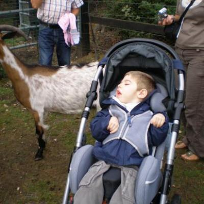 Dylan visite la mini-ferme.